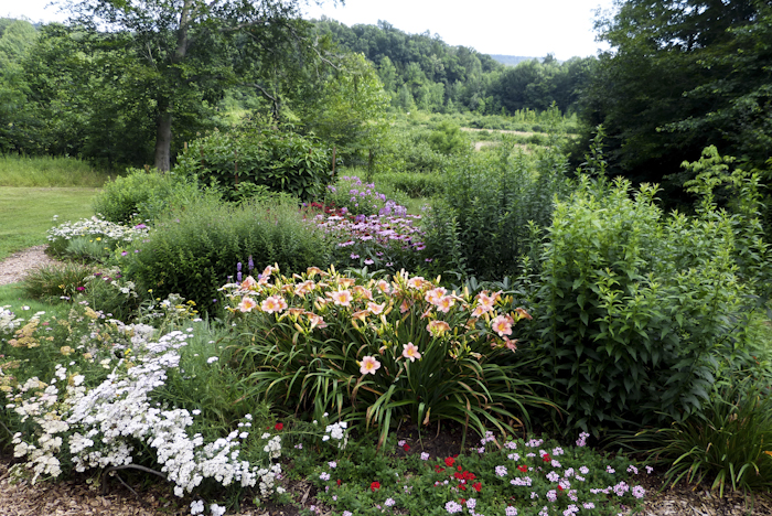 Butterfly garden and res basin by Erin Smaldone