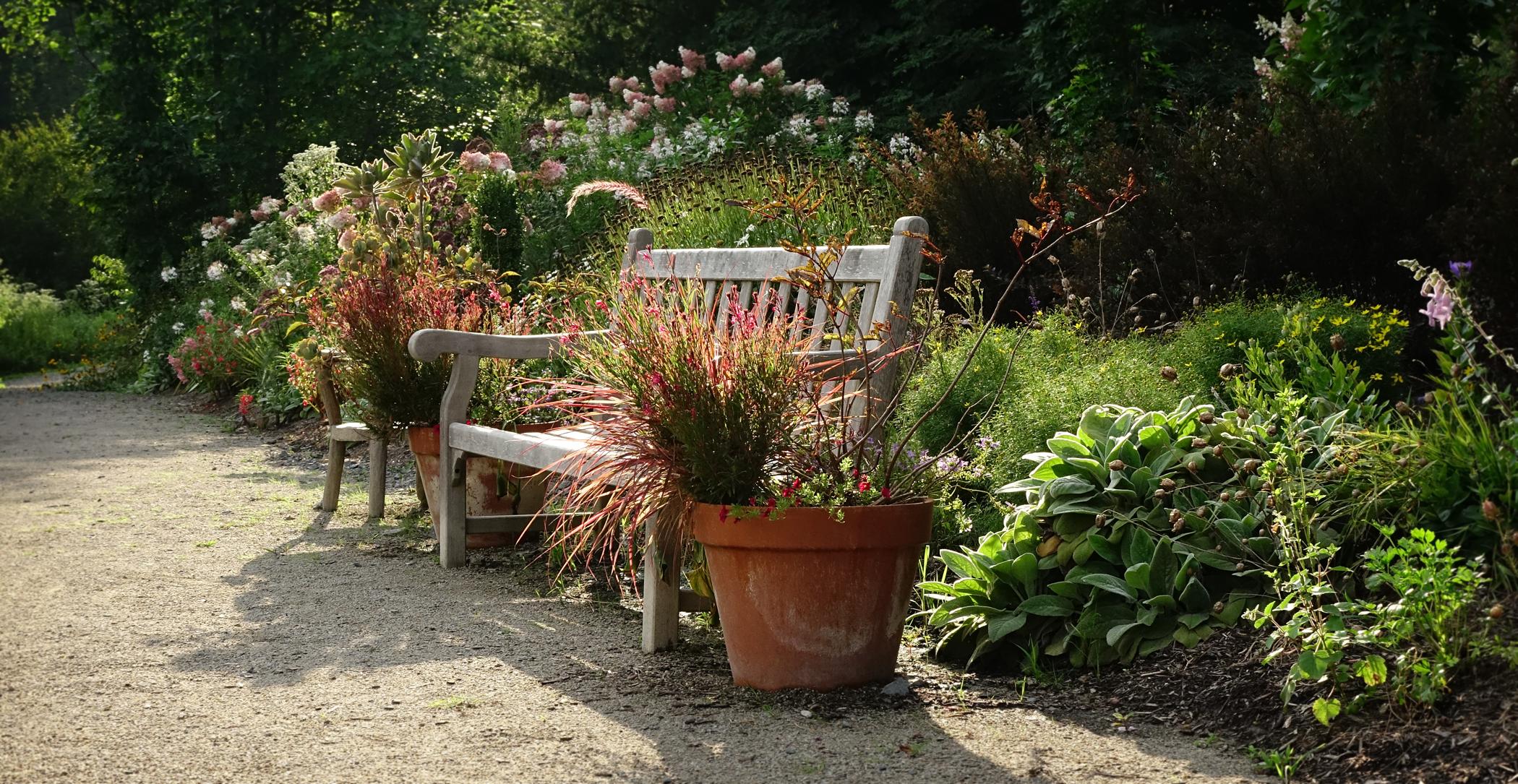Memorial Donations | West Virginia Botanic Garden
