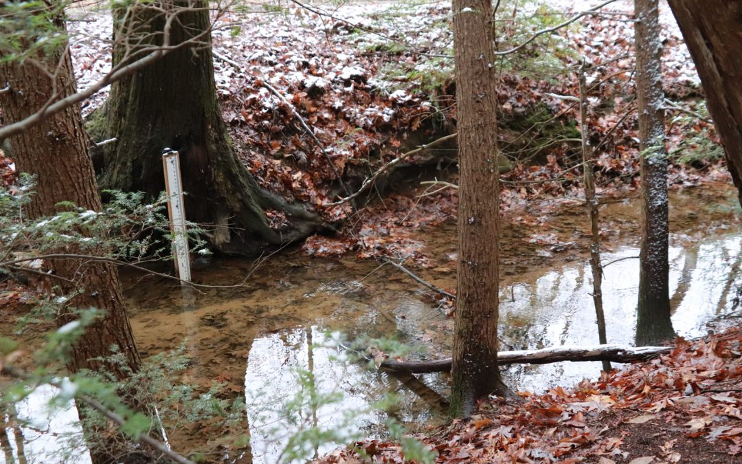 Study Confirms Adequate Water for WVBG