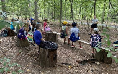 We are hiring a new Environmental Educator!
