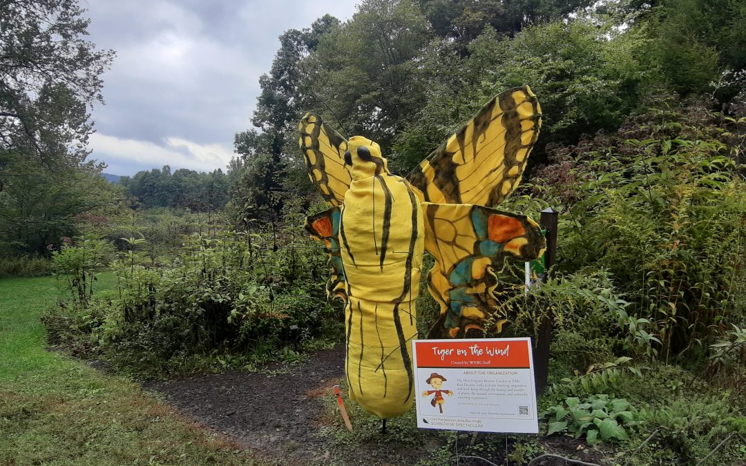 Join us for the 2021 Morgantown Area Non-Profit Scarecrow Spectacular!